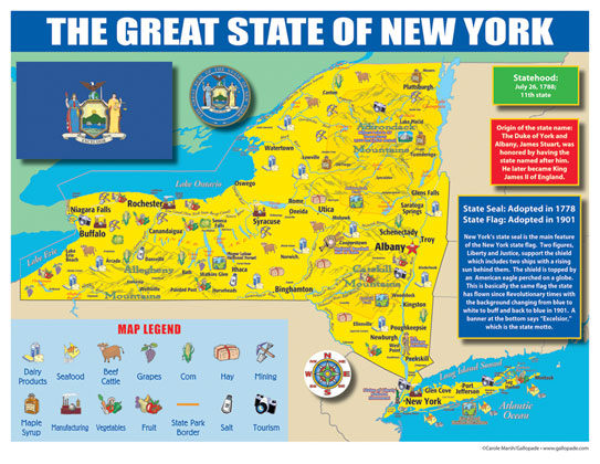 Gallopade International New York State Map For Students